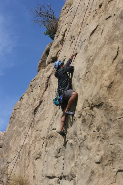 Rock Climbing Photo: Albert on Pin Scars 8-1-10