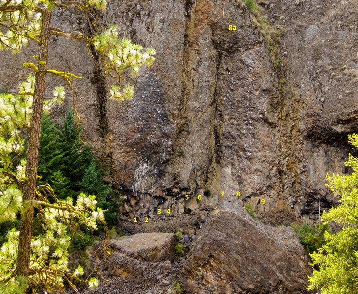 Rock Climbing Photo: (1)The Masochist 5.13a/b (2)Problem Child 5.14a (3...