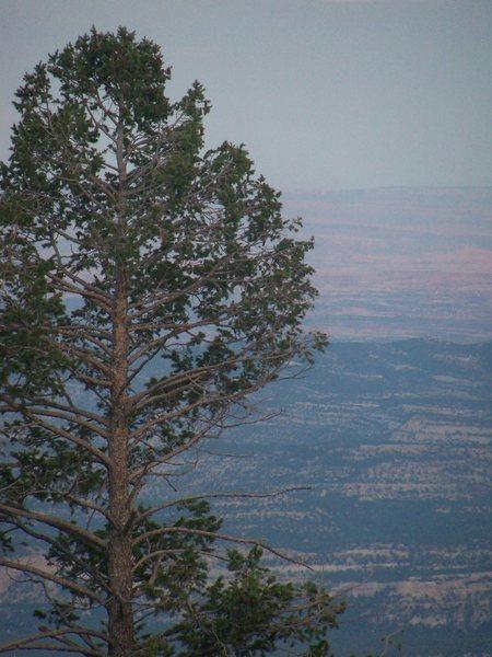 Vista from primitive campsite.