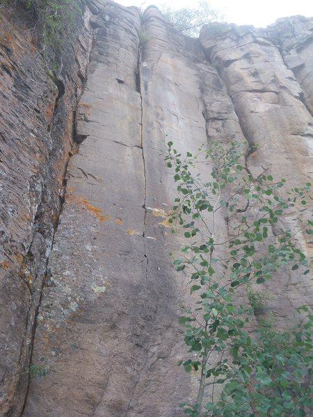 Rock Climbing Photo: Desperately hard, especially near the third bolt.