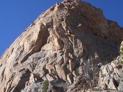 Rock Climbing Photo: Looking up Myopia