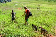 Rock Climbing Photo: Mogotes, Vinales Cuba