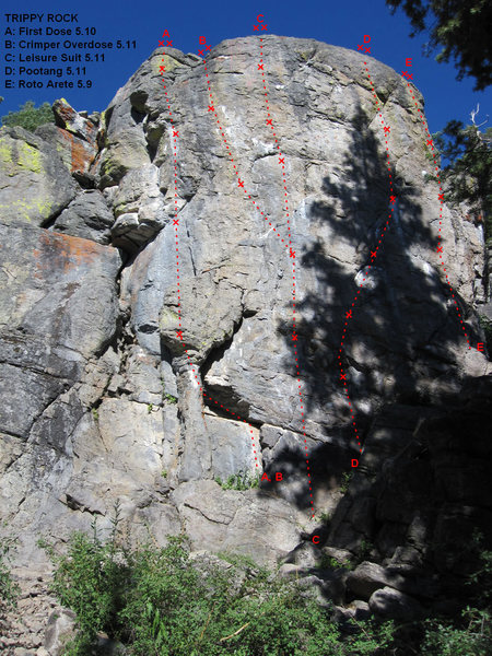 Rock Climbing Photo: Northwest Face of Trippy Rock.