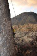 Rock Climbing Photo: Send.