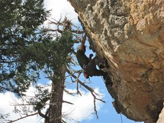 Rock Climbing Photo: Jesse about to clip.