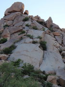 Rock Climbing Photo: Morrell Wall Routes