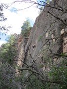 Rock Climbing Photo: High steppin' up the sustained crux of Muted Reali...