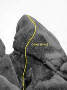 Rock Climbing Photo: Celine (5.10c), Joshua Tree NP