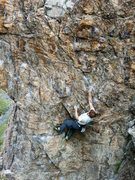 Rock Climbing Photo: Tenesmus gliding up the wall.