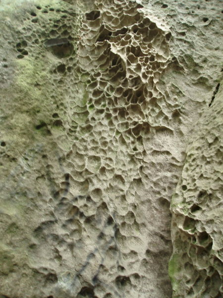 Rock Climbing Photo: Unbelievable features....  I hope this area gets r...