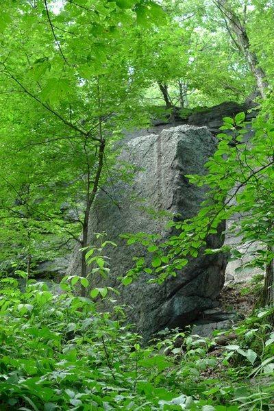 Rock Climbing Photo: The Pinnacle Boulder.