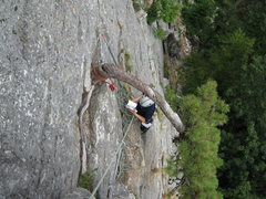 Rock Climbing Photo: Belay I used for the top of P1. There is a horribl...