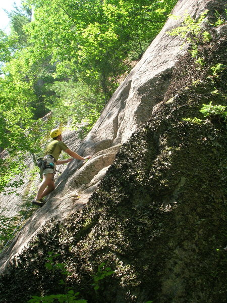Rock Climbing Photo: Dave Penny getting in the gear. AP Treat, Cathedra...