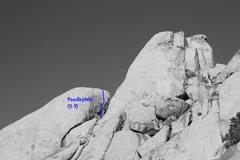 Rock Climbing Photo: Poodlephile (5.9), Joshua Tree NP
