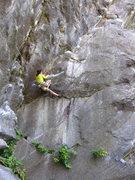 Rock Climbing Photo: J. Dias climbs through the crux on 'Peer Pressure'...