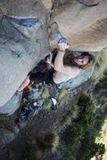 Rock Climbing Photo: Michael Levato on Black Rider. Photo by Joseph Las...