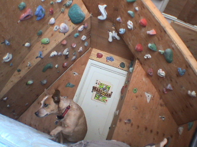 Rock Climbing Photo: Bear Pig is my spotter...