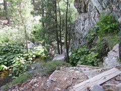 Rock Climbing Photo: Main Bowman crag belay area from above.