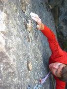 Rock Climbing Photo: petrified wood looking grips