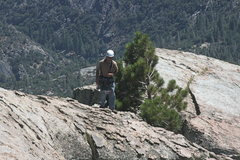 Rock Climbing Photo: Nathan almost to the top on Poof on the Magician. ...