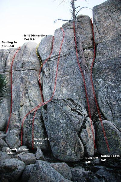 Rock Climbing Photo: Lower Dinosaur Rock - Center Left Topo