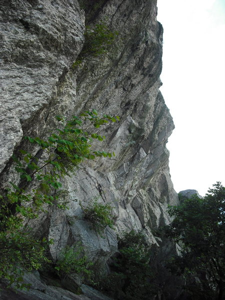 Rock Climbing Photo: Center Section