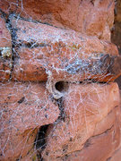 Rock Climbing Photo: tunnel spider web near the top