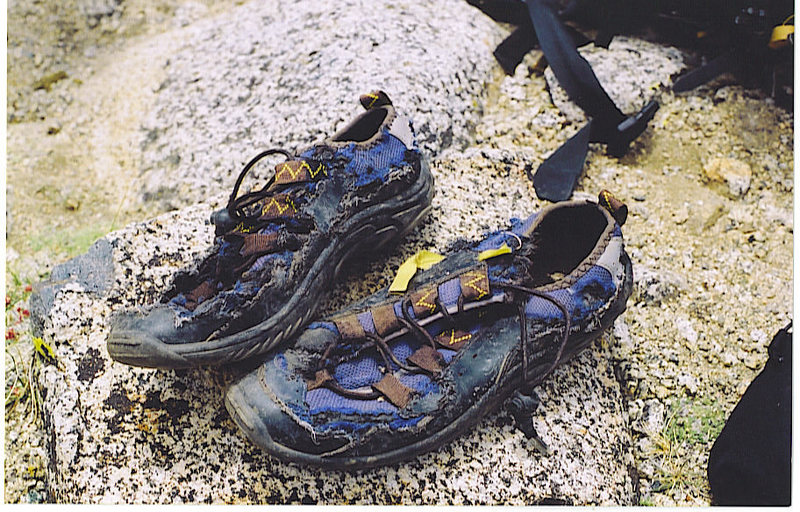 marmots ate my camp shoes.