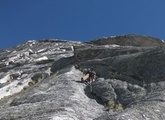 Rock Climbing Photo: 5.8 grassy cracks on the last pitch - excellent pi...