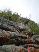 Rock Climbing Photo: P2's jungle.