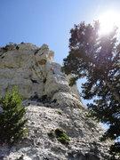 Rock Climbing Photo: Devil's Advocate