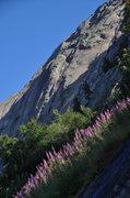 Rock Climbing Photo: the main wall