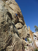Rock Climbing Photo: Chris leads up Black Magic Poodle.