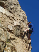 Rock Climbing Photo: Chris clipping, near the top of Black Magic Poodle...