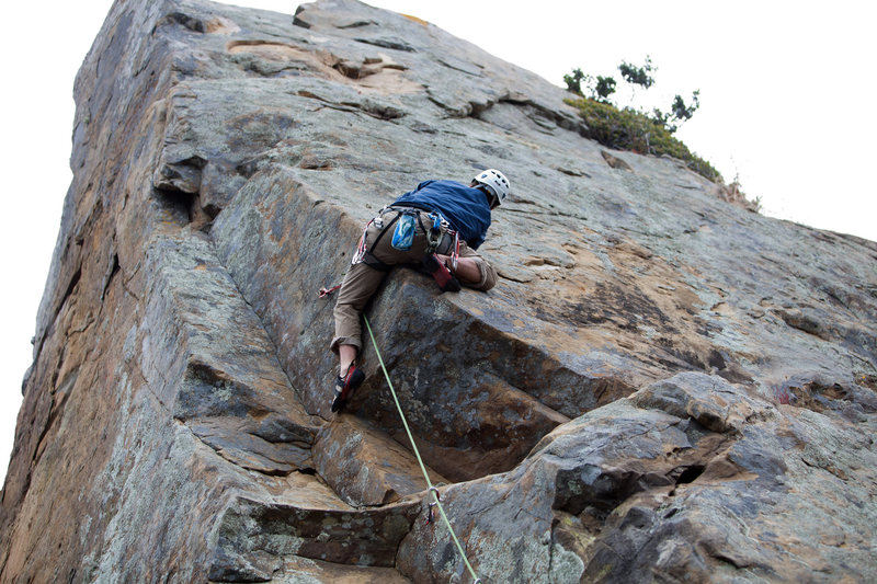 Rock Climbing Photo: Free Willy (Salt Point)