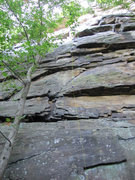 Rock Climbing Photo: The X's are the bolts. After the 2nd, I couldn't s...