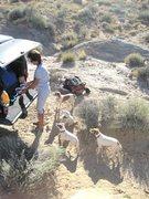 Rock Climbing Photo: Feeding time at the ranch