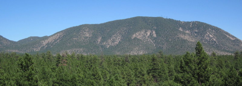 Many of Elden's climbing areas can be seen in this photo taken near the Museum of Northern Arizona. The thin horizontal line of rock on the far left is West Elden. The small comma shaped dash of rock left of center is Oaklands. The rock just beneath the peak is Higher Solitude. NW facing Lower Solitude sits inconspicuously down and right. The Devil's Chair pokes up into view down and right of the radio towers. Red Dragon is the second to last escarpment on the right, and Gloria's rocks are the toes of the rock foot beneath.