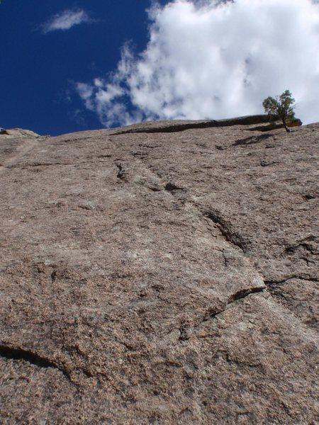 Rock Climbing Photo: Turbo Pup.
