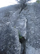 Rock Climbing Photo: The stacked blocks to the bay tree.