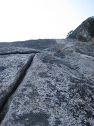 Rock Climbing Photo: The crack from the top of the bay tree.