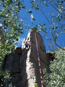 Rock Climbing Photo: Still contemplating...