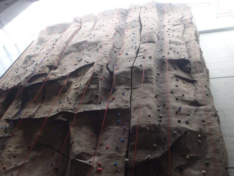 wall itself