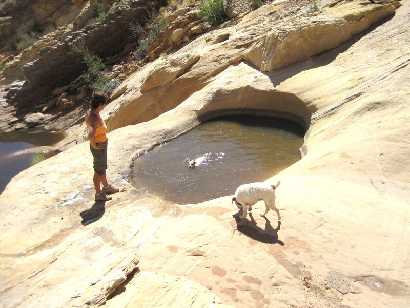 Rock Climbing Photo: Cool Pools at the entrance To Three Fingers Canyon
