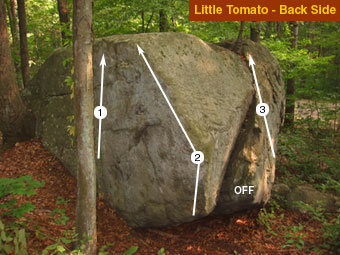 Back (away from road) of the Little Tomato.