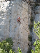 Rock Climbing Photo: Nearing the crux of Gun Street Girl.