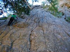 Rock Climbing Photo: Treasure Wall- Left lines (Tree Slab Far L).
