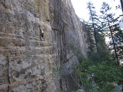 Rock Climbing Photo: S. Giffin sussing out the crux on 'Green Monster' ...