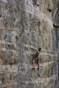 Rock Climbing Photo: Resting after the crux on 'Green Monster' ...