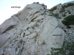 Rock Climbing Photo: wild things, and sidewinder